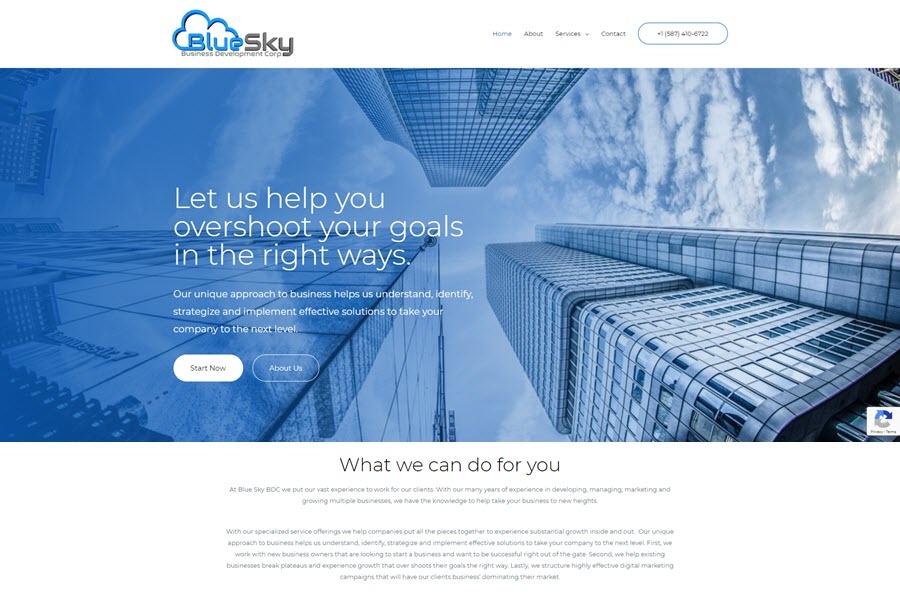 Blue Sky Business Development